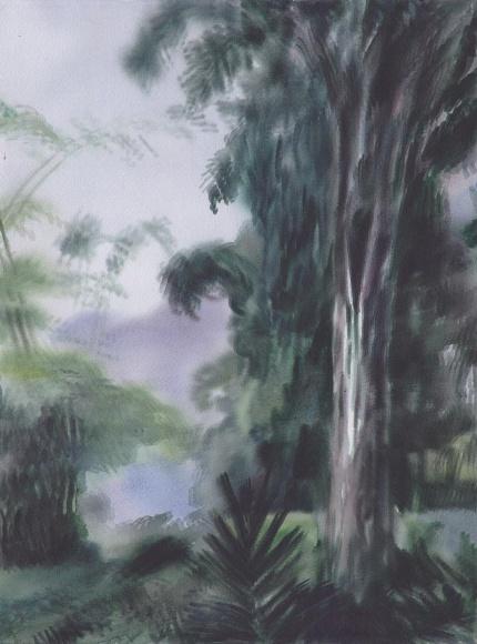 Arbeiten Auf Hawaii jonah gebka arbeiten